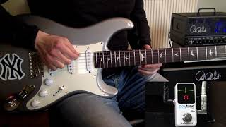 Guitar Tuning Guide