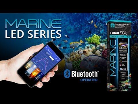 Fluval Sea Marine 3 0 Led Fixture 32w 24 34 Aquacave Com