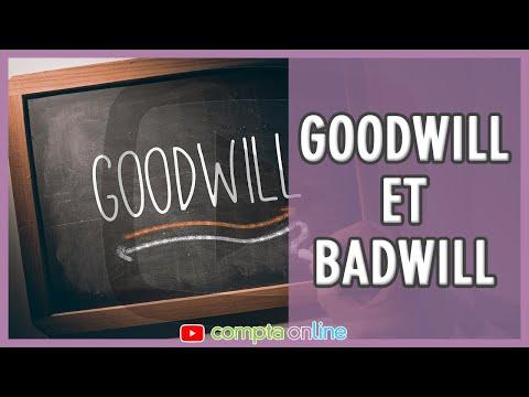La notion de goodwill ou de badwill