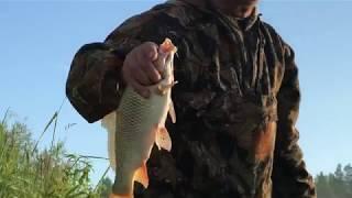 Новые правила рыболовства в пермском крае