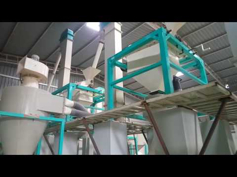 Maize De-Germination and Milling Plant