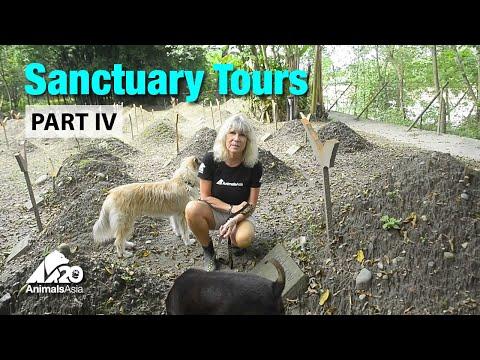 Sanctuary tour part IV