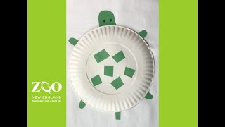 Come out of your shells and create a paper plate turtle craft!
