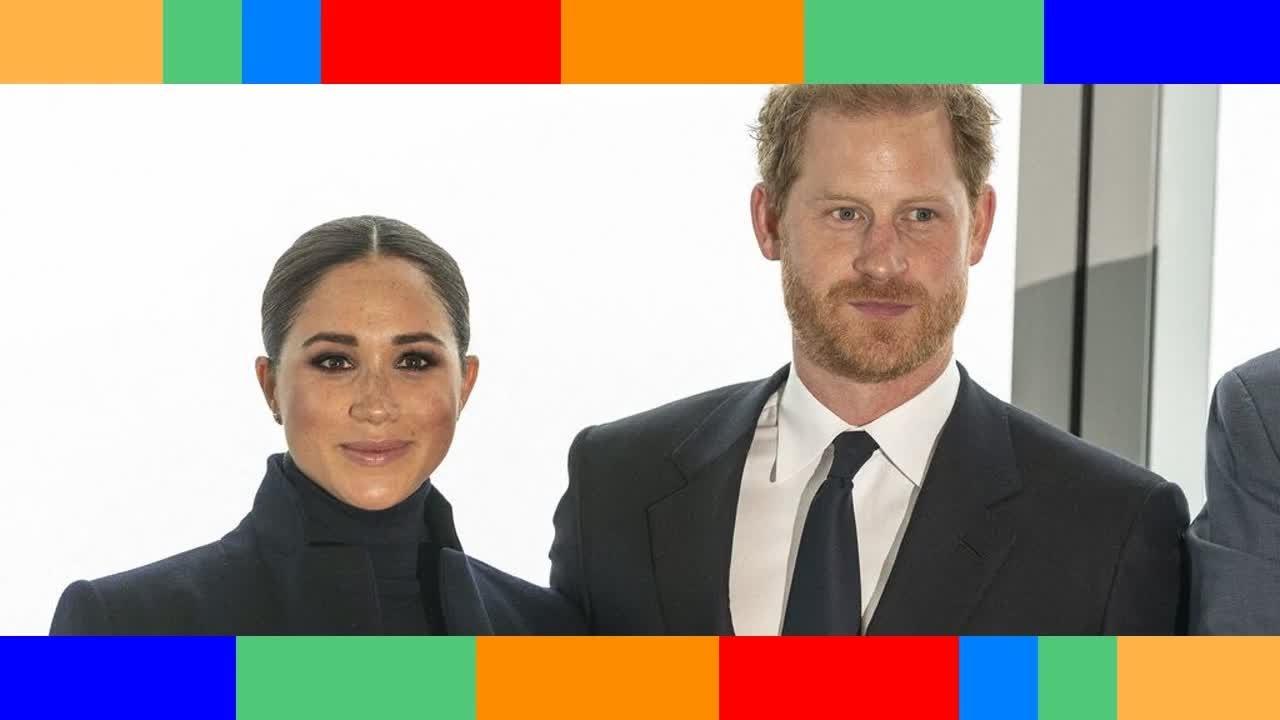 Ils n'y connaissent rien  Harry et Meghan âprement critiqués après leur dernière annonce