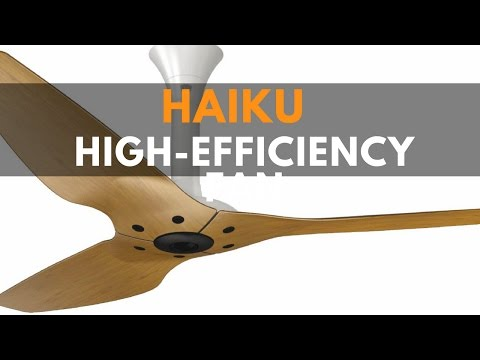 Haiku Ceiling Fan [Woosh] [LED Lights] [bamboo], by Big Ass Fans, most efficient Ceiling fan