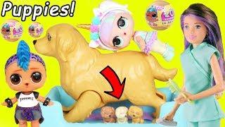 Barbie Puppy has Babies! Pharaoh Babe Unicorn LOL Surprise Doll Playmobil for Lil Punk Boi JOJO SIWA