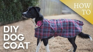 DIY Dog Coat // Sew-A-Long