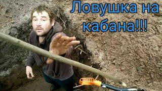 Как и из чего сделать петлю для ловли кабана