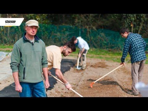 Come preparare il terreno per l'orto - tecniche e consigli - come coltivare l´orto biologico