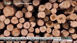 Производство фанеры. Сделано в России РБК с Вячеславом Волковым