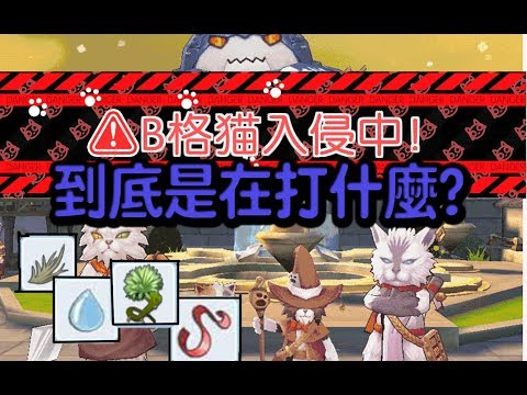 【Ro 手遊 仙境傳說】B格貓入侵活動 參加後面真正的意義 【官方沒解釋系列】