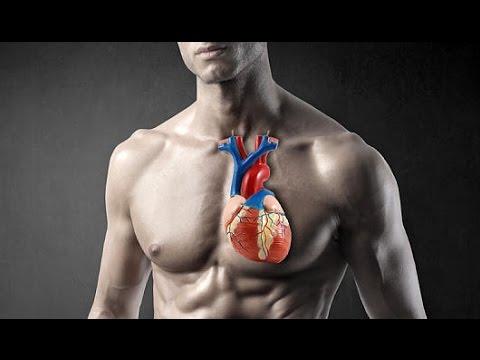 Blutdruckänderungen während Traumata