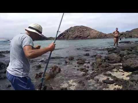 Guardare il film in linea cacciando e pescando