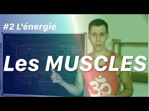 Le déplacement implanta sous le muscle