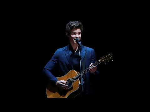 Shawn Mendes - In My Blood (Audio)