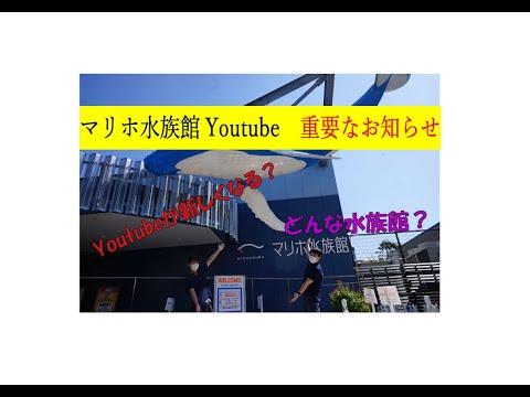 マリホ水族館 担当者交代&館内紹介!