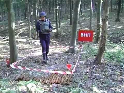 Гусятинський район: поблизу міста Копичинці виявлено боєприпаси