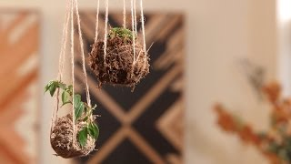 Youtube thumbnail for How to make a kokedama hanging garden