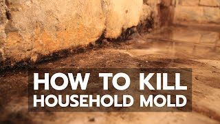 How to Kill Household Mold - Video Youtube