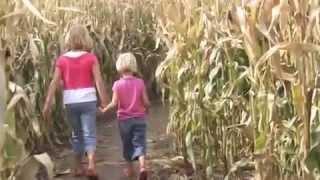 10th Annual Harvest Farm Fall Festival & Corn Maze