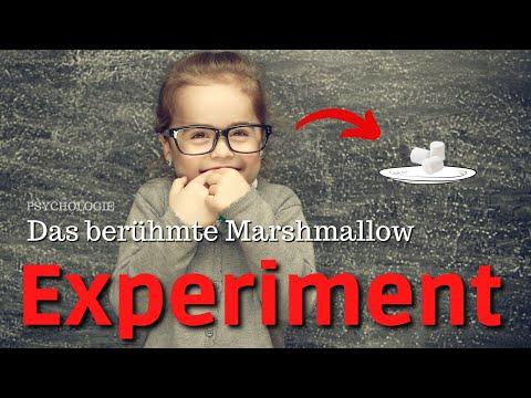 Hat diabetischen Zuckerersatzstoffe sind schädlich