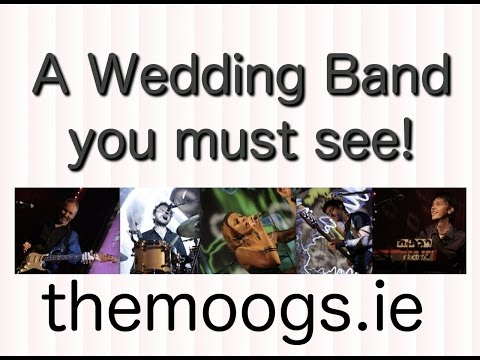 """The Moog 69s Irelands Best Event Party Wedding Band. """"I want you back"""""""