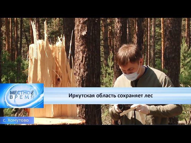 Иркутская область сохраняет лес