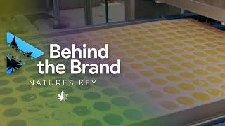 Cannaline Marketing - Video - 2
