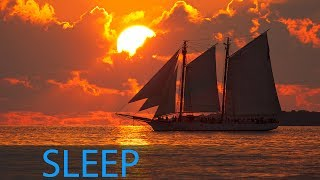 8 Hour Deep Sleep Music: Delta Waves, Relaxing Music Sleep, Sleeping Music, Sleeping Music ☯1665
