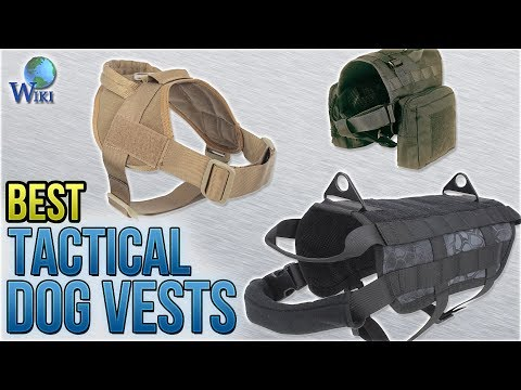 8 Best Tactical Dog Vests 2018