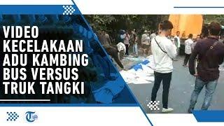 Video Detik-detik 'Adu Kambing' Bus Rosalia Indah Versus Truk Tangki di Way Kanan