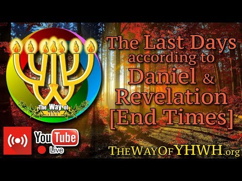 The End Times [1st] (Last Days According to the Times of the Book of Daniel and Revelation)