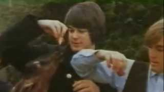Rubber Soul Gave Me Pet Sounds, Pet Sounds Gave Them Sgt. Pepper (Endless Syncopation)