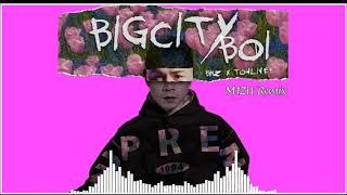 Bigcity Boi - Touliver x Binz (M1ZH remix)