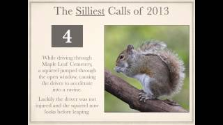 preview picture of video 'CKPS Silly Calls 2013'