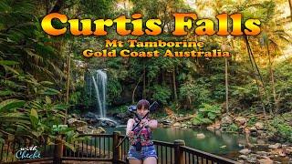 Curtis Falls Mount Tamborine Gold Coast