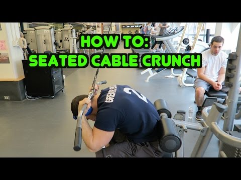 Cable Seated Crunch (plate loaded)