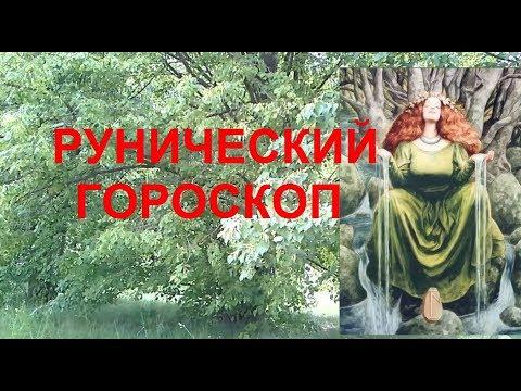 Гороскоп овен года лошади