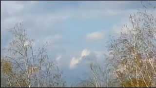 Сбили самолет Ан 30 над Славянском (Полнове видео)