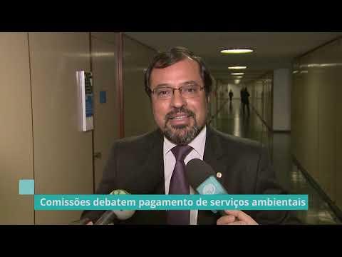 Deputado comenta sobre pagamento de serviços ambientais - 08/08/19