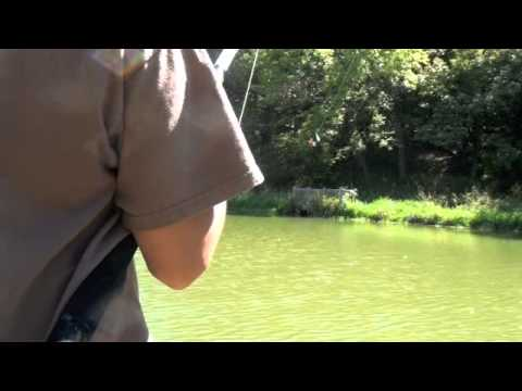 Small Pond Catfishing