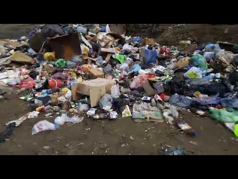 Вонь, завалы мусора, помойки, крысы. Жители Кирзавода сняли видео