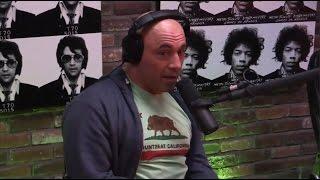 Joe Rogan Talks Tiger Schulmann's Martial Arts