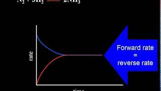 Chemical Equilibrium Explained   Video Tutorial   Crash Chemistry Academy