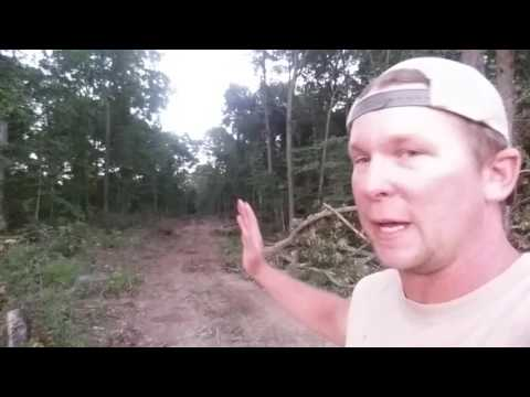 Property line fencing! Part 1.
