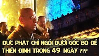 Có phải Đức Phật chỉ ngồi dưới gốc bồ đề trong 49 ngày thiền định ???