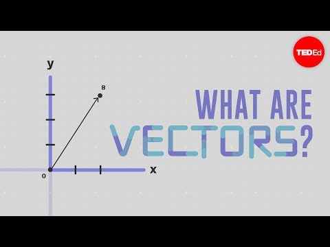 What are vectors?