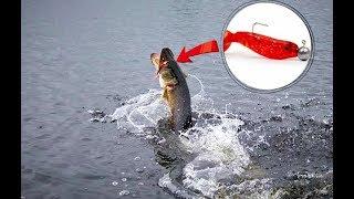 Джиговая рыбалка окунь щука