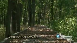 Vinemount Swamp - Dofasco 2000 Trail.mpg
