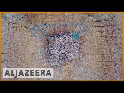 🇦🇺 Australia's most populous state '100 percent' in drought | Al Jazeera English